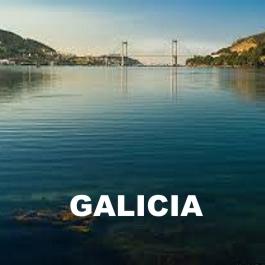 Paseos por la Ría de Vigo