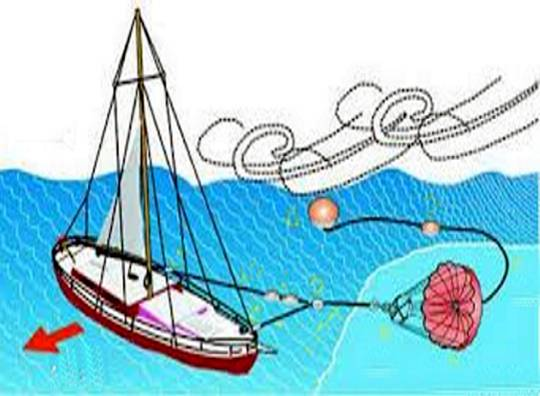 Anclas Flotantes Marinas